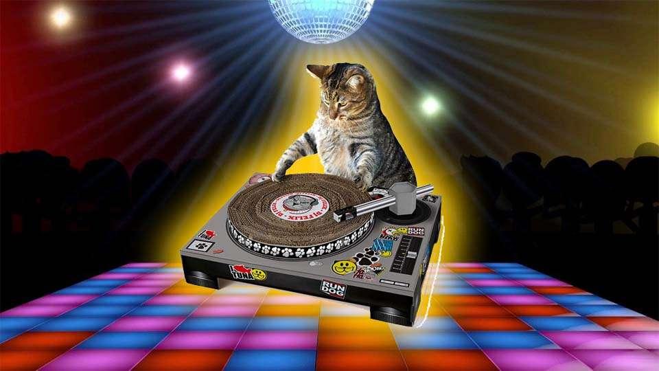 Gato-DJ. El rascador más disco. - Regalo Loco